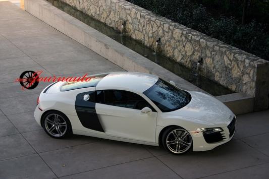 Audi R8 Stikes a Pose
