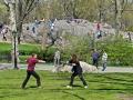 Fencing - New York City April 2012 Central Park