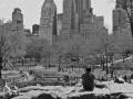 Pondering - New York City April 2012 Central Park