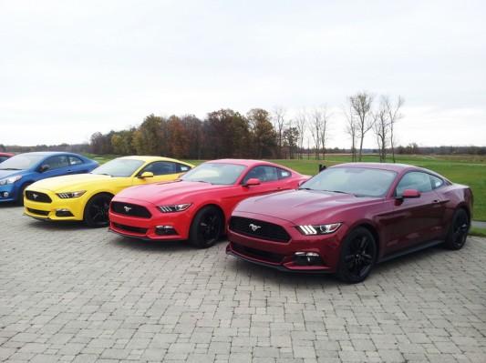 2015 Ford Mustang - Shaun Keenan 2014